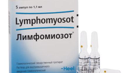 От чего помогает «Лимфомиозот»? Инструкция по применению для детей и взрослых