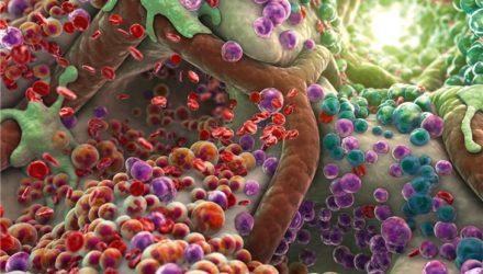 60% тела человека составляют микробы