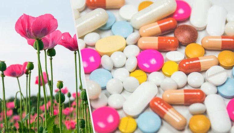 опиоидные средства