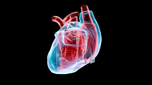мониторинг сердечного выброса